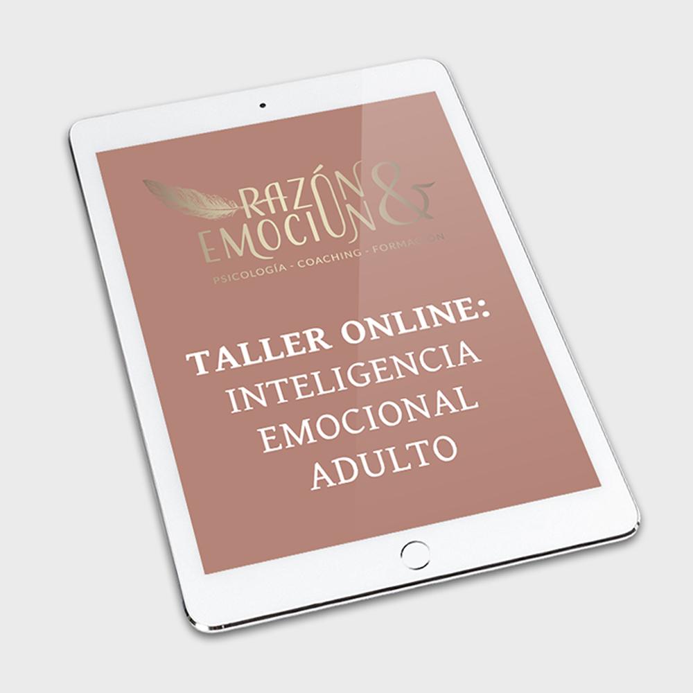 Taller Online: Inteligencia emocional adulto